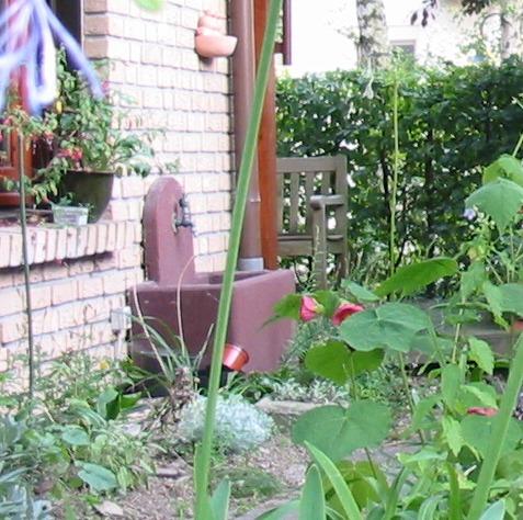 Wasserentnahmestelle Soll Schöner Werden Mein Schöner Garten Forum