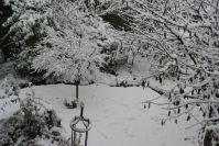 Auch im Schnee hat der Garten noch seinen Reiz