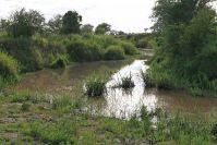 und immer wieder werden die Gewässer per Landrover durchquert