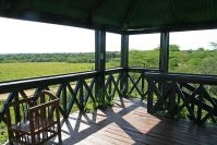 Abschied von der Mara: Der Aussichtsturm mit endlosem Blick über die Savanne