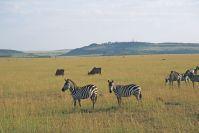 Kenya_2005_g118.jpg
