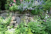 Noch ein Blick auf die Mauer im Vorgarten