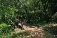 Unser Zelt war ganz weit hinten, mitten im Busch