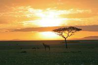 Wieder ein zauberhafter Sonnenaufgang